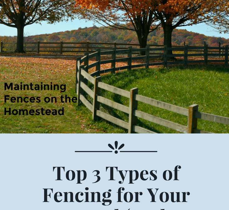 Top 3 Types of Fencing for Your Homestead (And How to Maintain Them)