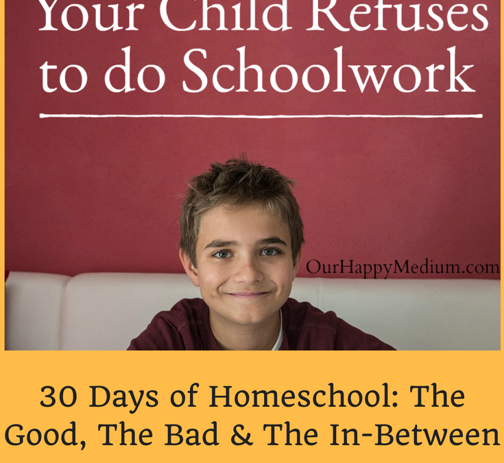 Eight Tips for When Your Child Refuses to Do Schoolwork