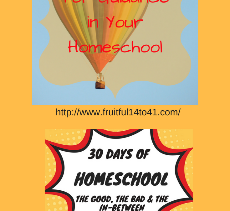 Setting Goals for Guidance in Your Homeschool